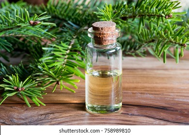 A bottle of fir essential oil with young fir branches