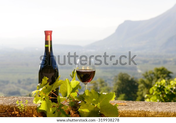 bottle and glass of red wine with a vineyard in the background