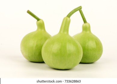 Bottle gourd, Calabash gourd, vegetables and  herbs Medicinal properties.