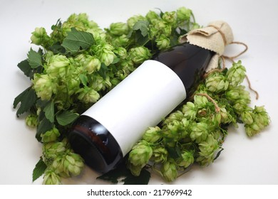Bottle of home brewed craft beer with a blank label and hops over a white background