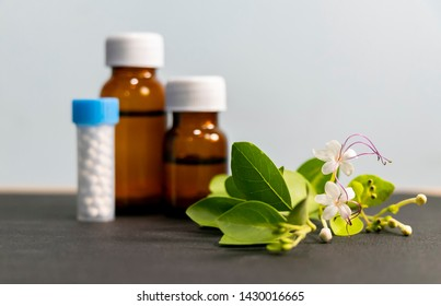 Bottle of homeopathic remedies consisting of the pills (made from an inert substance - sugarlactose) and liquid homeopathic substance with white flower and green leaves closeup