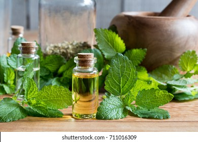A bottle of melissa (lemon balm) essential oil with fresh melissa leaves in the background