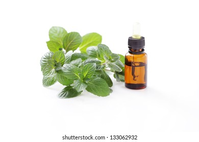 bottle of mint essential oil - alternative medicine