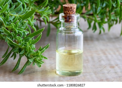 A bottle of mountain savory essential oil with fresh Satureja montana on a table