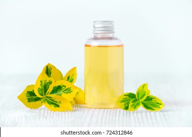 a bottle of natural shower gel or shampoo with plants, selective focus