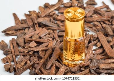Bottle of oil agarwood tree against the bark. Oil Oudh. Arabic oil Oud natural background of tree bark. Arabian oud attar perfume or agarwood oil fragrances in mini bottle.