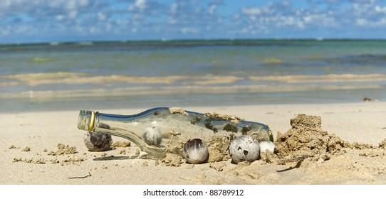 Bottle on the wild caribbean  beach