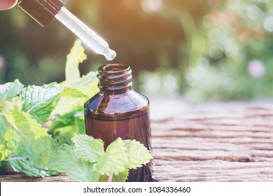Bottle of peppermint essential oil and  Fresh mint leaves selective focus