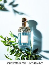 Bottle of perfume with green leaves on a light blue background, Image. Flat lay, top view