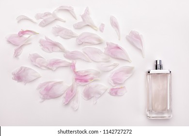 bottle of perfume with scent of flowers on white background. perfume with spray of flower petals top view