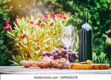 Bottle of red wine with grape. Wine tasting and gastronomy concept