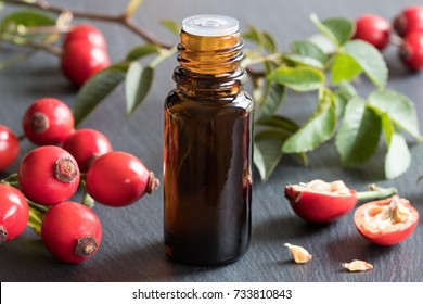 A bottle of rose hip seed oil with fresh rose hips in the background
