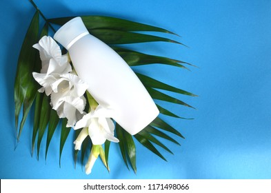 Bottle shampoo on palm leaf with exotic flower blue background, copy space. Damaged hair sulfate and paraben free shampoo. Oil palm orchid coconut nutrition. Shampoo important hair natural moisture.