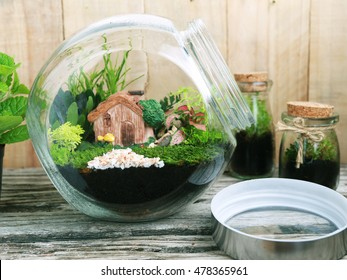 Water Terrarium Images Stock Photos Vectors Shutterstock
