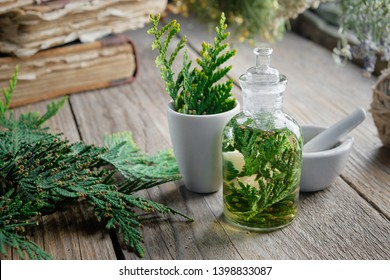 Bottle of Thuja infusion or oil, mortar and old books. Herbal medicine.