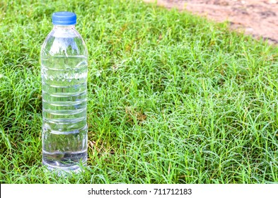 bottle of water is placed on green grass.