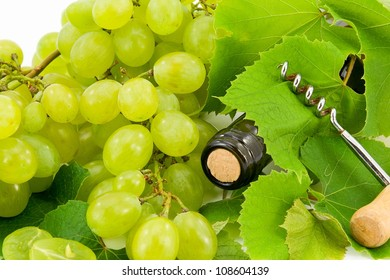 bottle of white wine from grapes