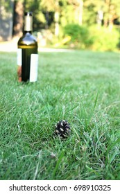 A bottle of wine on the lawn on a Sunny summer day.
