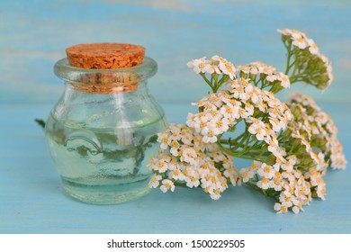 A bottle of yarrow essential oil with blooming yarrow close up, blue wooden table