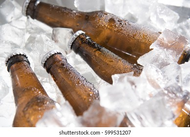 bottles of beer chilled in ice