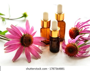 Bottles with essence oil with purple echinacea on a wooden background