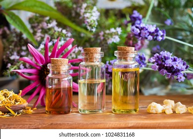 Bottles of essential oil with dried and fresh herbs and frankincense resin