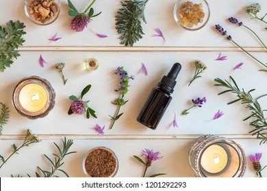 Bottles of essential oil with frankincense, hyssop, lavender and other herbs on a white background