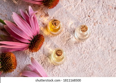 Bottles of essential oil with fresh echinacea flowers on a pink background, with copy space