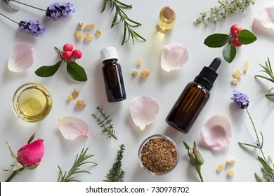 Bottles of essential oil with rosemary, thyme, creeping thyme, wintergreen, lavender, myrrh, frankincense, rose buds and rose petals on a white background