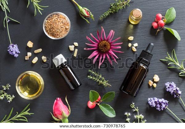 Flaschen ätherischen Öls mit Rosmarin, Thymian, Kriechthymian, Echinacea, Wintergrün, Lavendel, Myrrhe, Frankfurter Pfeife und Rosenknospen auf dunklem Hintergrund