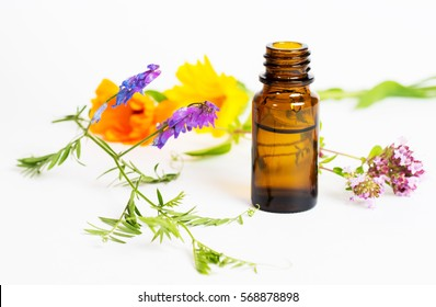 bottles with herbal elixir on white