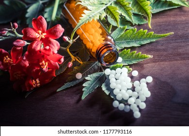 Bottles of homeopathic globules and healing herbs and flowers. Homeopathy medicine
