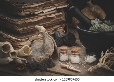 Bottles of homeopathic globules, mortar of dried moss, old books, dry roots, nuts and plants. Homeopathy medicine.