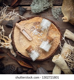 Bottles of homeopathic globules on wooden stump, dried moss, dry roots, nut shell, dry plants, eucalyptus and lotus seeds. Top view.