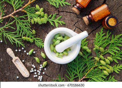 Bottles of homeopathic globules, Thuja occidentalis drugs and mortar. Homeopathy medicine. Top view.