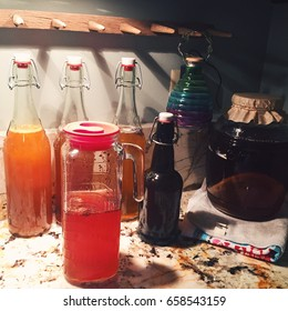 Bottles of kombucha on the kitchen counter