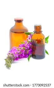 Bottles with natural plant extract and essential oil  from the Purple loosestrife (Lythrum salicaria) plant, a healing herb used as a cure for diarrhoea and dysentry, isolated on white background