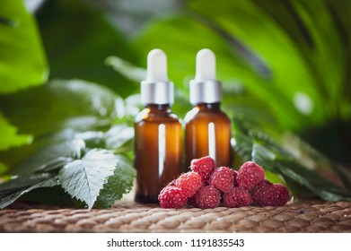 Bottles with raspberry oil, fresh berries and raspberry leaves on a natural green background