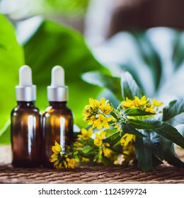 Bottles with St. John's wort extract and flowers Hypericum, organic cosmetics with herbal extracts