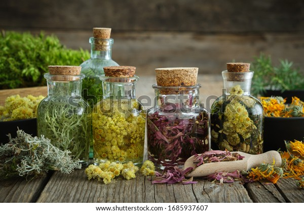 Bottles of tincture or infusion of healthy medicinal herbs and healing plants on wooden table. Herbal medicine.