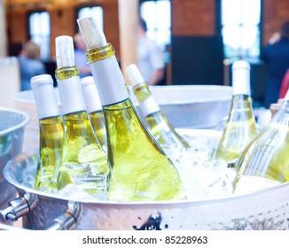 Bottles of white wine on ice at a party.