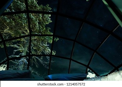 BOTTOM UP: Spectacular view of the evening sky from a cool glassy igloo in Finland. Large tree obstructing the view from a glassy house in a cool winter resort in the idyllic Scandinavian wilderness.