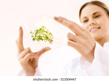Bottom view beautiful young biologist experimenting in laboratory. Close up photo of green sprouts