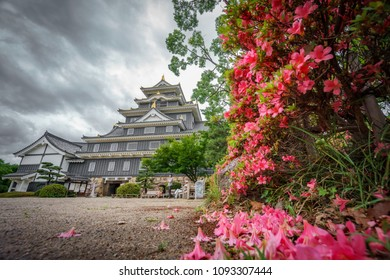 Bottom view of Okayama castle against stormy clouds in Japan with flowers in the garden