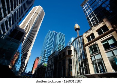 Bottom view of the skyline of the central business district (CBD) of Sydney city, with the modern skyscrapers and the famous Sydney Tower, the tallest structure of the city,  lit by the sun.