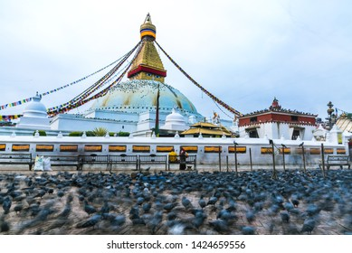 Boudhanath stupa, Kathmandu, Nepal - April 2019, The pigeons live around the stupa and are coming to find the food from people in every morning