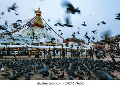 Boudhanath stupa, Kathmandu, Nepal - April 2019, morning activity of the people who come to feed the pigeons in front of the stupa