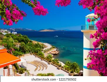 Bougainvillea frames a view across a bay in Ortakent near Bodrum, Turkey