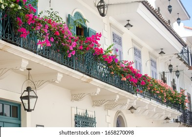 Bougainvilleas in full bloom adorn the balconies of the Casco Viejo in Panama City