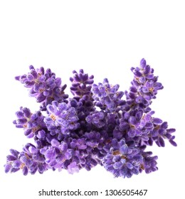 Bouguet of violet lavendula flowers isolated on white background, close up. Place for text
